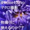 iPhone 13Proのマクロ撮影でアクセサリーの物撮りはできるのか